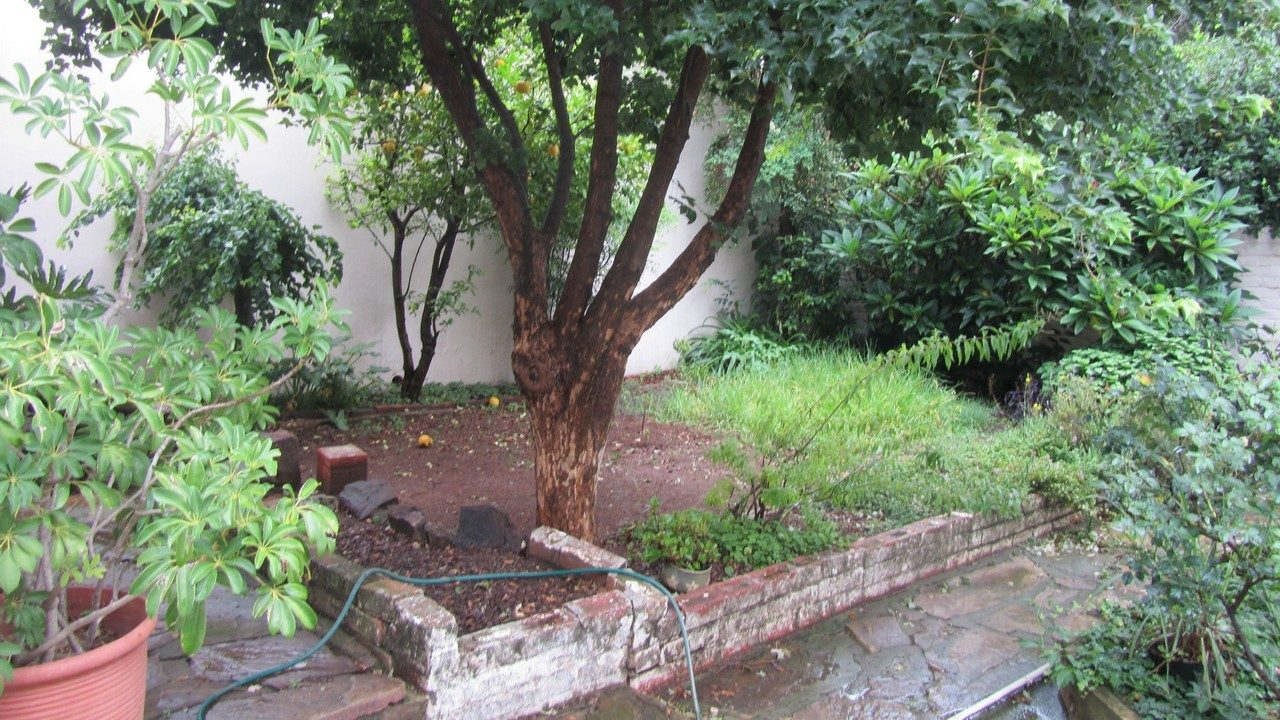 sandton-landscaping-before-01